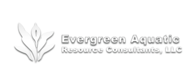 Evergreen Aquatic Wetlands Mitigation Logo