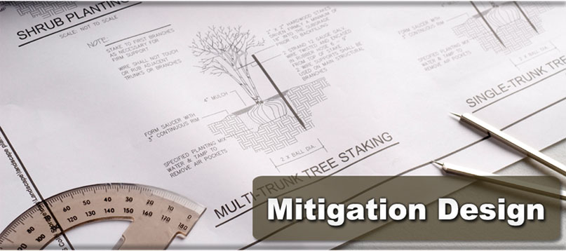 Mitigation Design